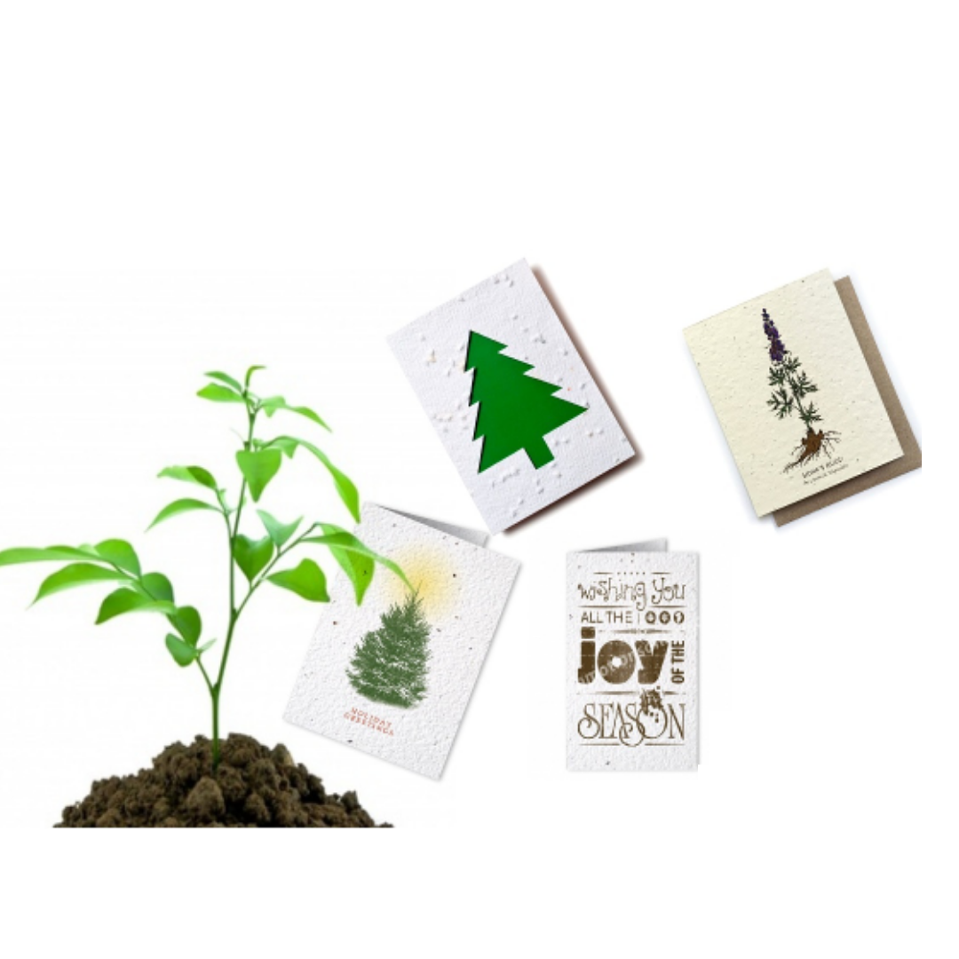 Use seed paper plantable greetings cards