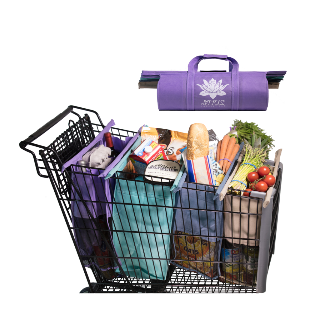 Use trolley bags when grocery shopping and avoid plastic bags