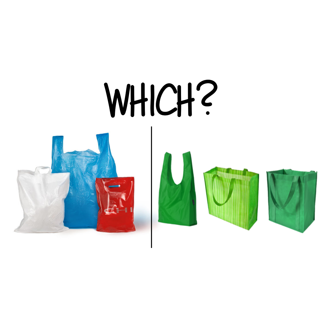 Plastic Bag vs. Reusable Bag