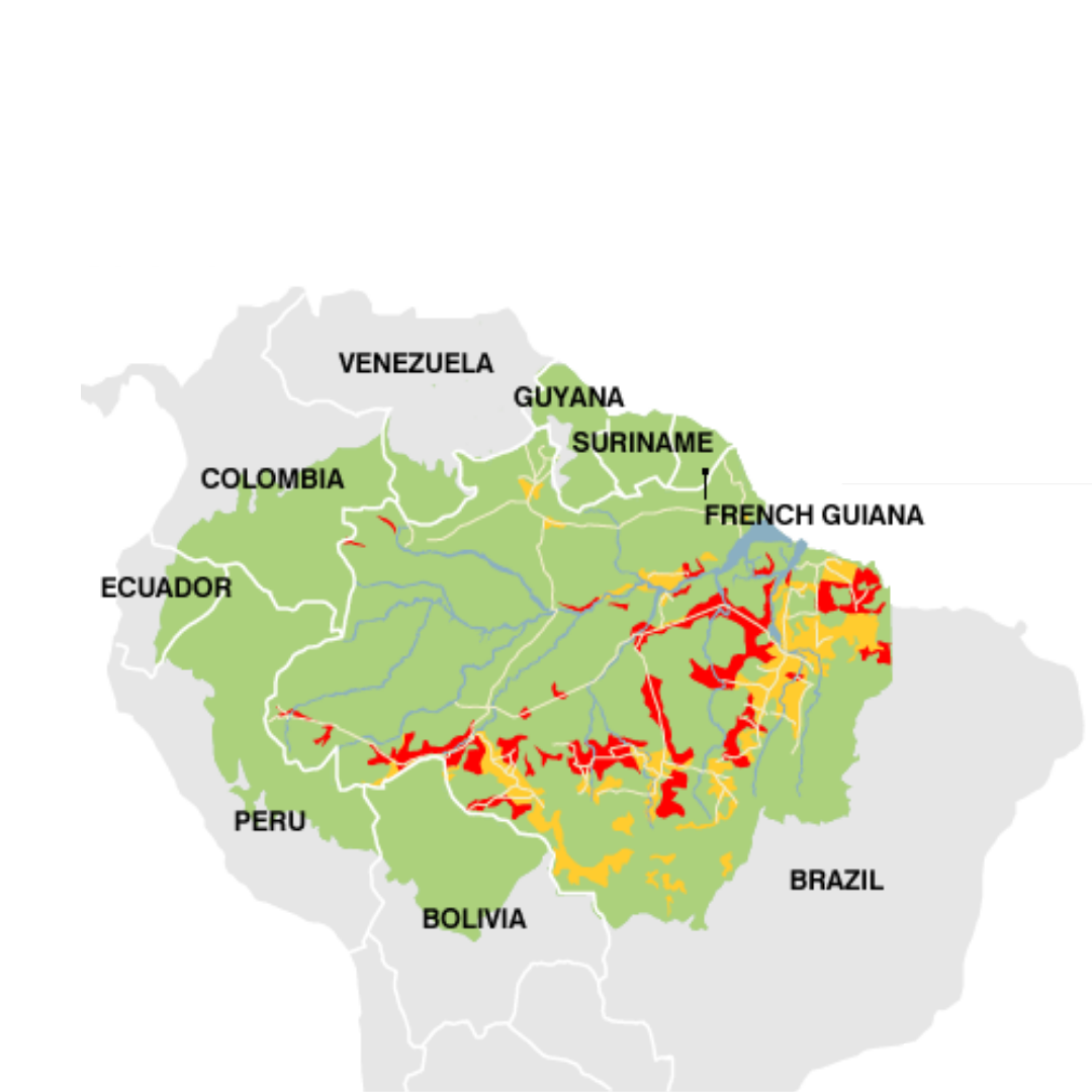 Amazon deforestation is accelerating in Brazil