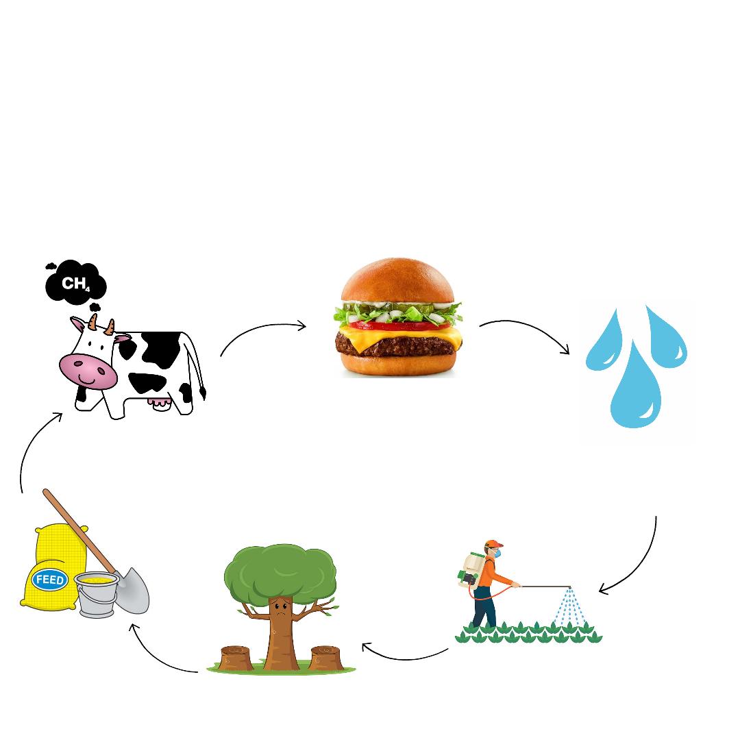El impacto ambiental de una hamburguesa de carne de vacuno