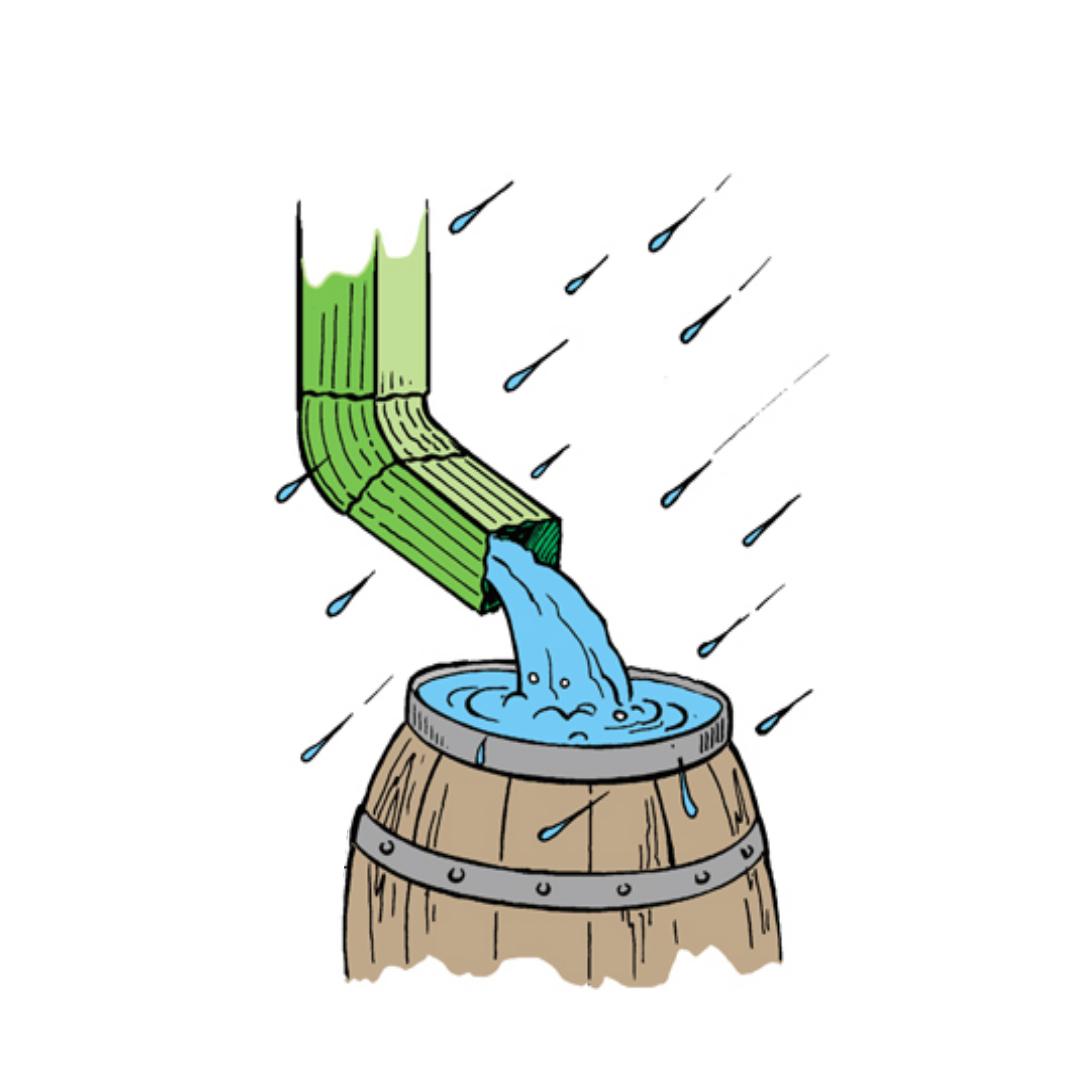 Install a rainwater tank in your garden